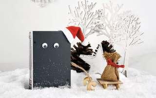 Graues Gehäuse mit Kulleraugen und kleiner Nikolausmütze vor einer Winterlandschaft.